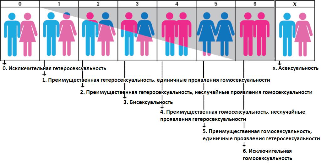 Откуда берется нетрадиционная сексуальная ориентация