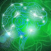 Раннее развитие детей - мнение нейрофизиологов