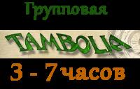 Трансформационная игра Тамболия