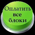 vebinar-oplata-7