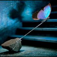Как искать смысл в жизни, если ситуацию никак не изменить?